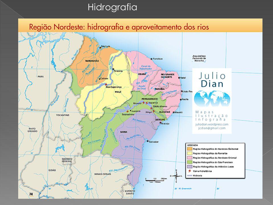 As bacias hidrográficas do Nordeste são: Bacia do São Francisco : é a principal da região, formada pelos rios São Francisco e seus afluentes.