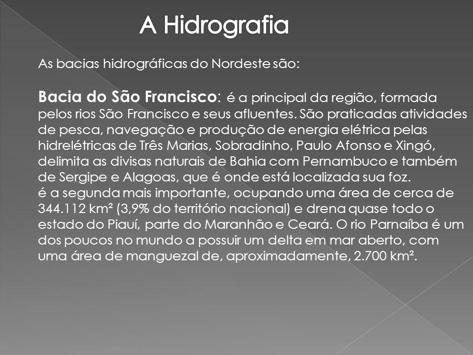 Bacia do Atlântico Nordeste Oriental: ocupa uma área de 287.384 km², que abrange os estados do Ceará, Paraíba, Rio Grande do Norte, Pernambuco e Alagoas.