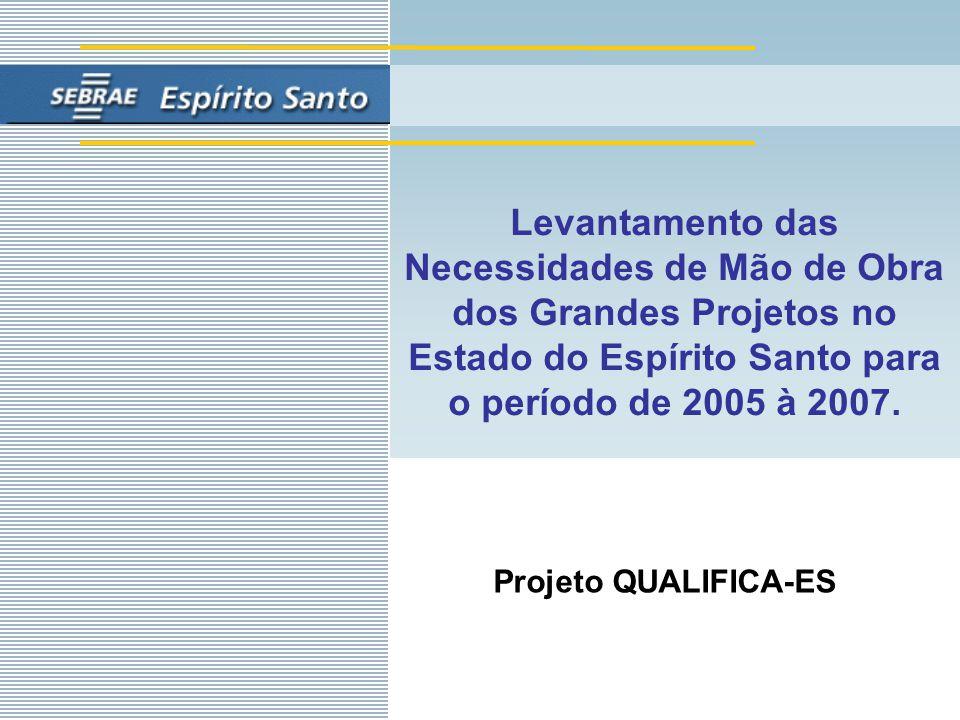Levantamento das Necessidades de Mão de Obra dos Grandes Projetos no Estado do Espírito Santo para o período de 2005 à 2007.