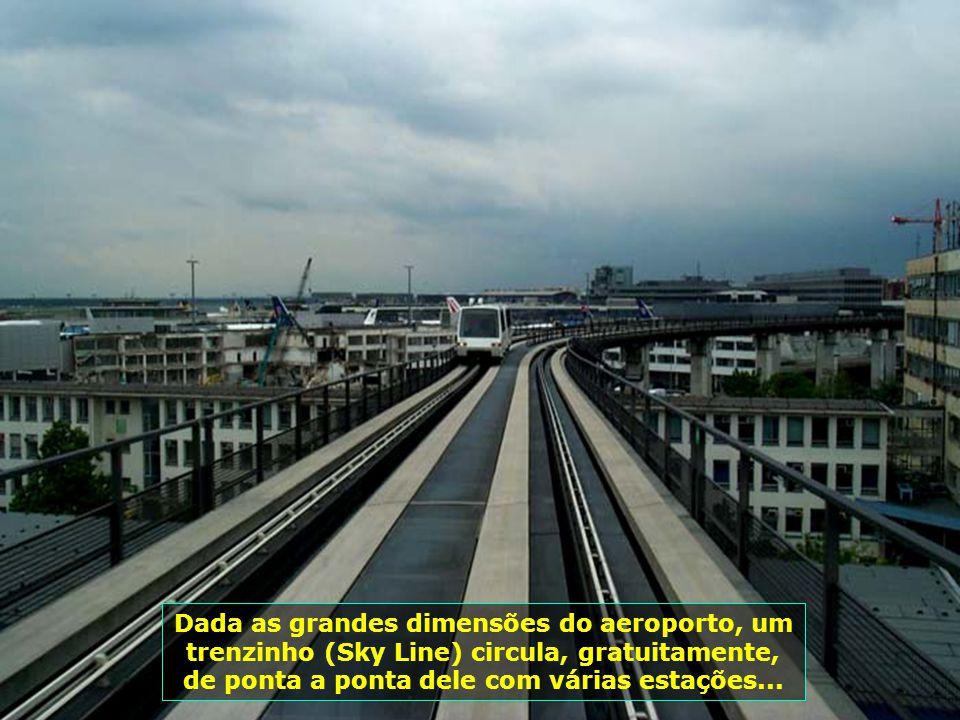 Carrinhos elétricos percorrem todo o aeroporto, levando pessoas com algum tipo de dificuldade até os seus destinos...