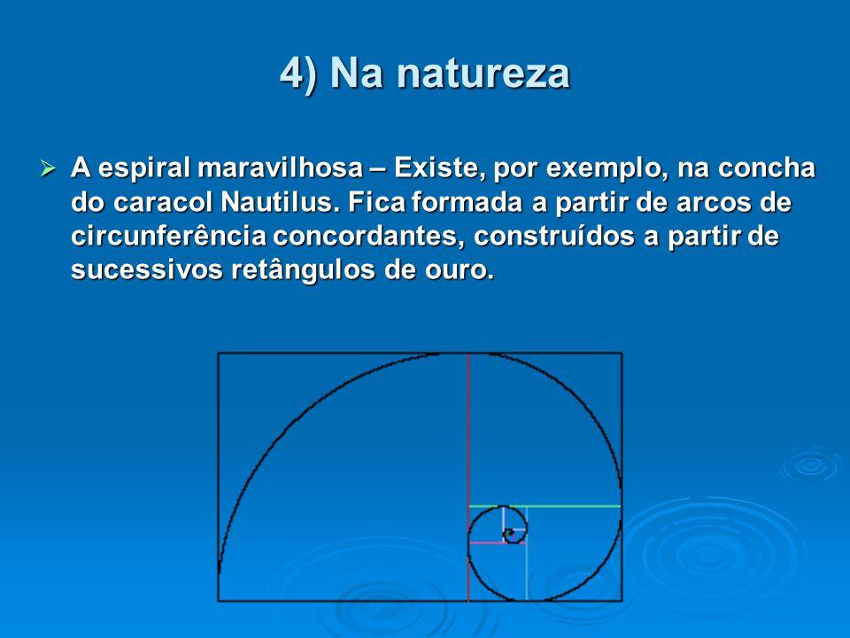 4) Na natureza  A espiral maravilhosa – Existe, por exemplo, na concha do caracol Nautilus. Fica formada a partir de arcos de circunferência concorda