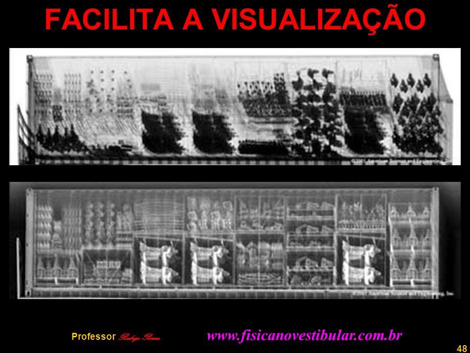 48 FACILITA A VISUALIZAÇÃO Professor Rodrigo Penna www.fisicanovestibular.com.br