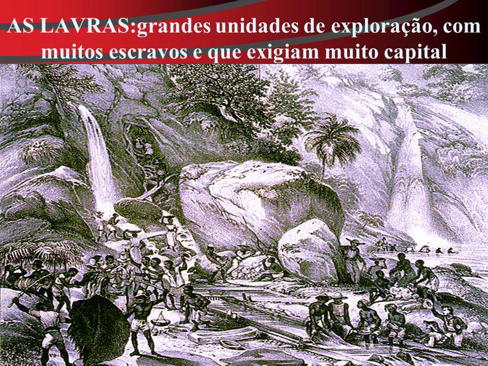 AS LAVRAS:grandes unidades de exploração, com muitos escravos e que exigiam muito capital