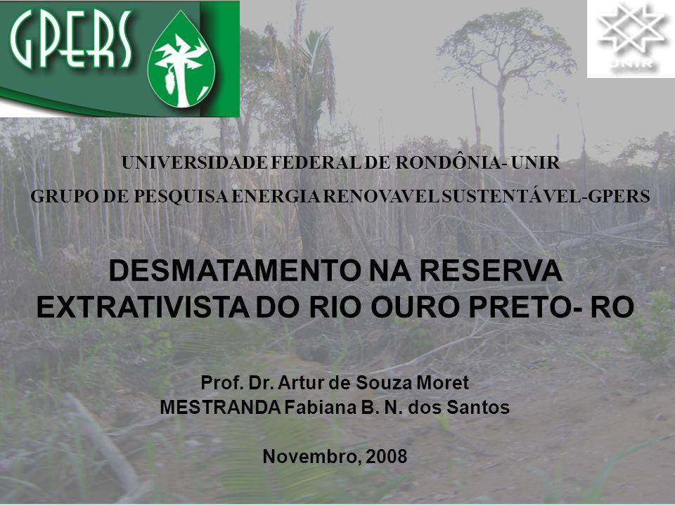 Prof. Dr. Artur de Souza Moret MESTRANDA Fabiana B. N. dos Santos Novembro, 2008 UNIVERSIDADE FEDERAL DE RONDÔNIA- UNIR GRUPO DE PESQUISA ENERGIA RENO