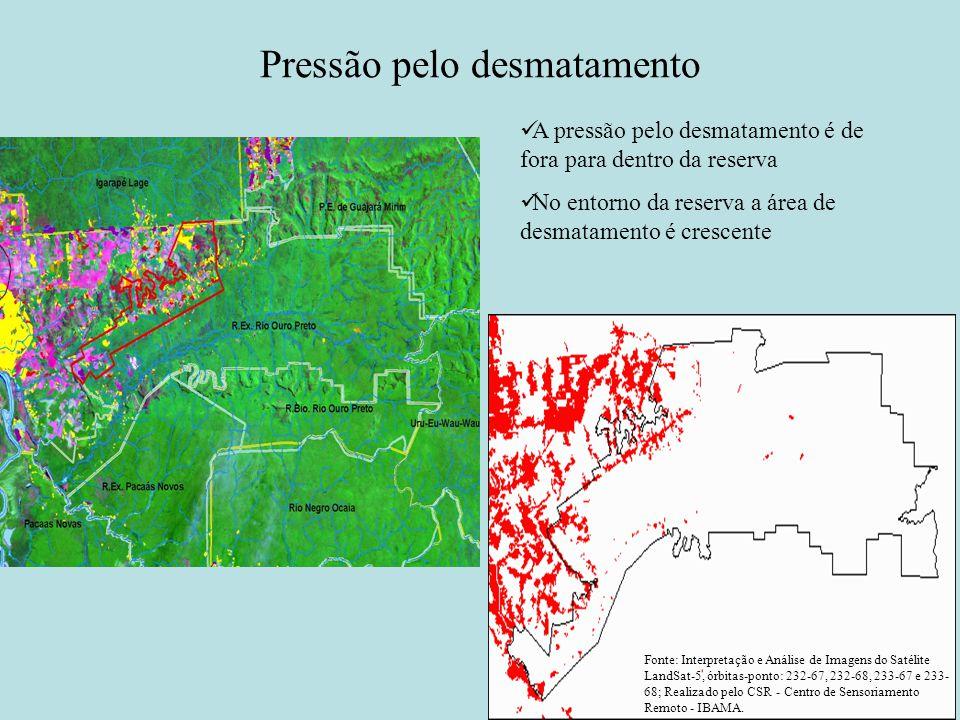 Pressão pelo desmatamento Fonte: Interpretação e Análise de Imagens do Satélite LandSat-5, órbitas-ponto: 232-67, 232-68, 233-67 e 233- 68; Realizado