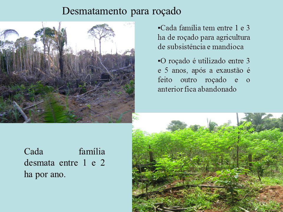 Desmatamento para roçado Cada família tem entre 1 e 3 ha de roçado para agricultura de subsistência e mandioca O roçado é utilizado entre 3 e 5 anos,