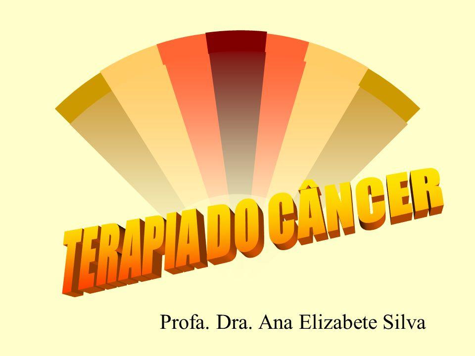 Profa. Dra. Ana Elizabete Silva