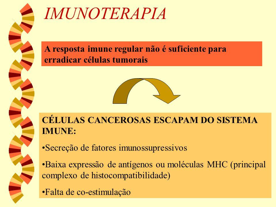 IMUNOTERAPIA A resposta imune regular não é suficiente para erradicar células tumorais CÉLULAS CANCEROSAS ESCAPAM DO SISTEMA IMUNE: Secreção de fatore