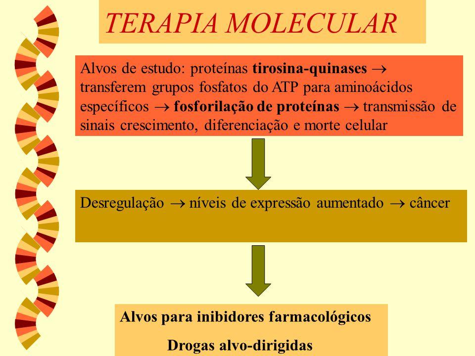 TERAPIA MOLECULAR Alvos de estudo: proteínas tirosina-quinases  transferem grupos fosfatos do ATP para aminoácidos específicos  fosforilação de prot