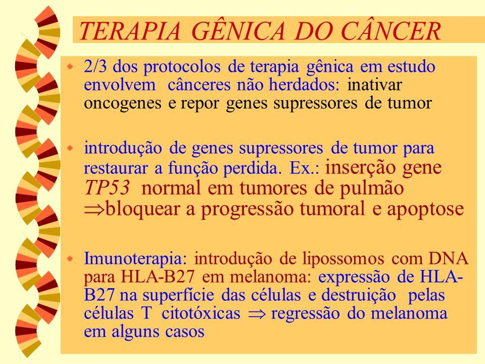 TERAPIA GÊNICA DO CÂNCER w 2/3 dos protocolos de terapia gênica em estudo envolvem cânceres não herdados: inativar oncogenes e repor genes supressores