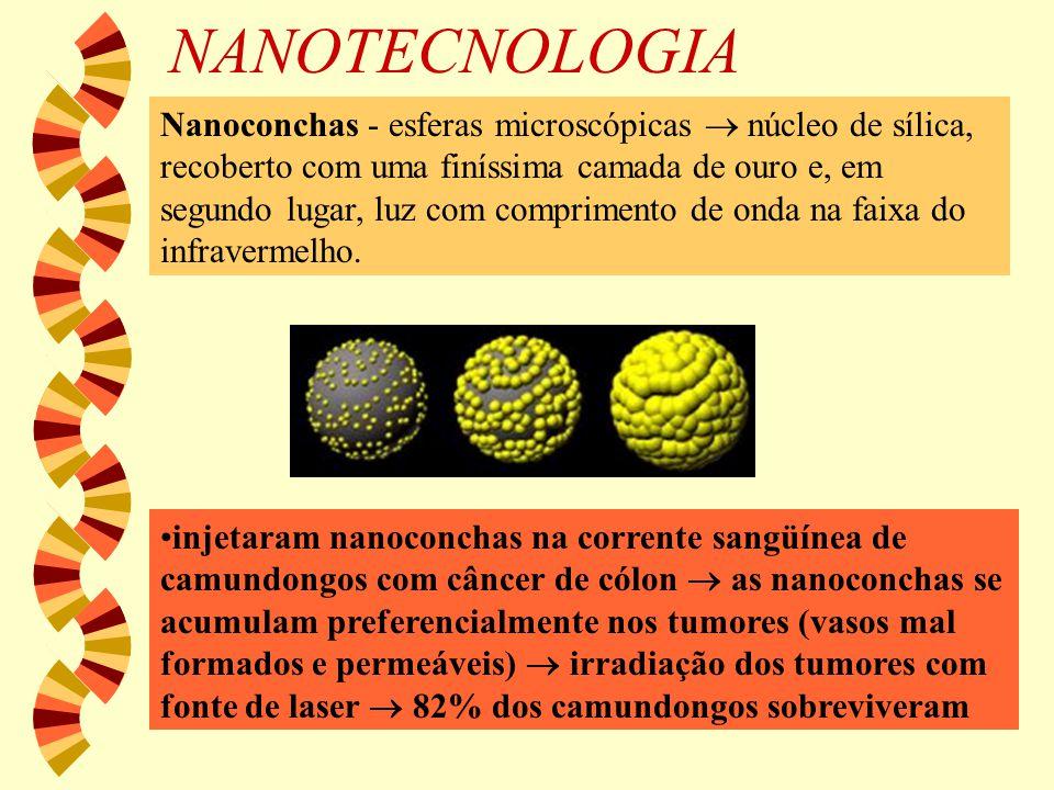 NANOTECNOLOGIA Nanoconchas - esferas microscópicas  núcleo de sílica, recoberto com uma finíssima camada de ouro e, em segundo lugar, luz com comprim