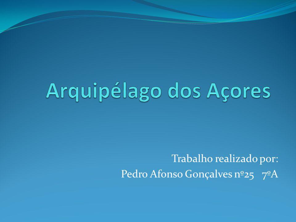 Trabalho realizado por: Pedro Afonso Gonçalves nº25 7ºA