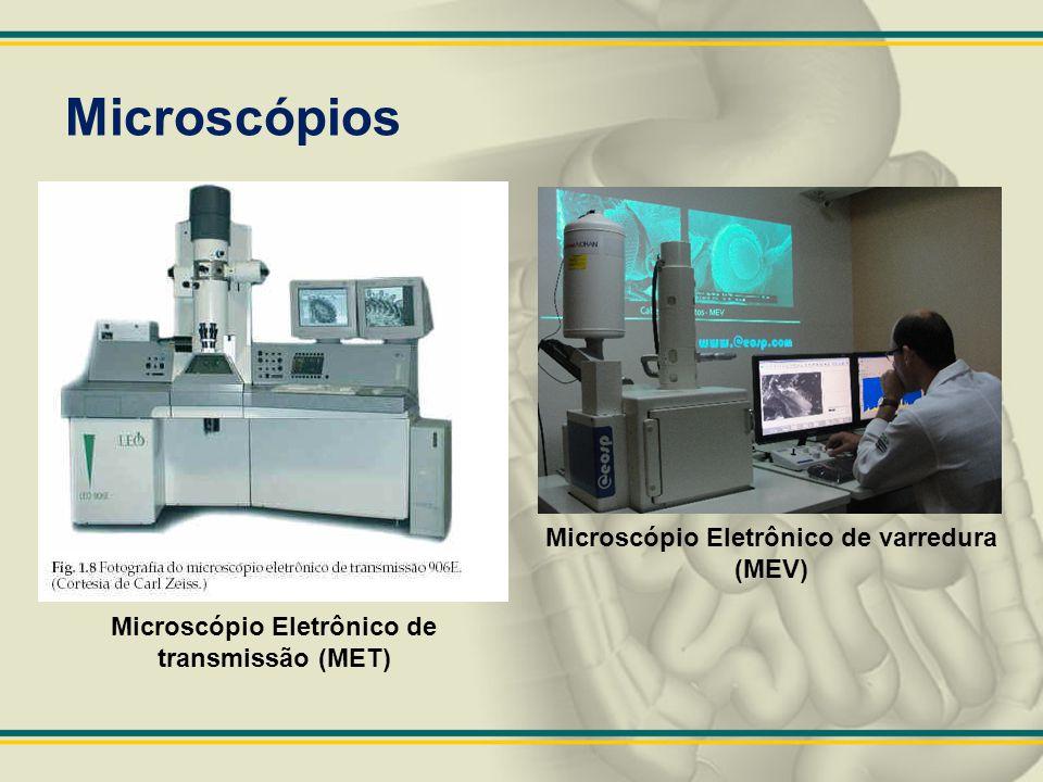 Microscópios Microscópio Eletrônico de varredura (MEV) Microscópio Eletrônico de transmissão (MET)