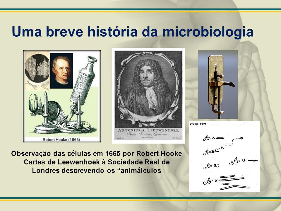 """Uma breve história da microbiologia Observação das células em 1665 por Robert Hooke Cartas de Leewenhoek à Sociedade Real de Londres descrevendo os """"a"""