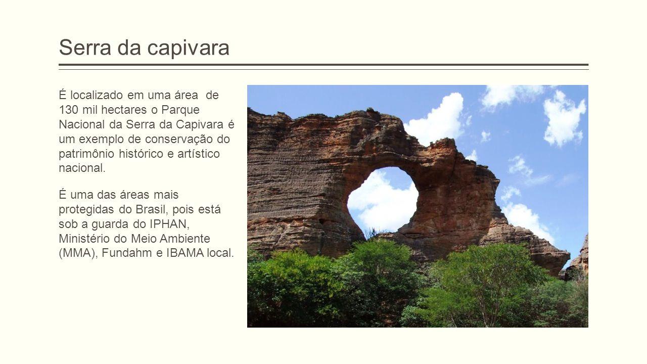 Serra da capivara É localizado em uma área de 130 mil hectares o Parque Nacional da Serra da Capivara é um exemplo de conservação do patrimônio histór