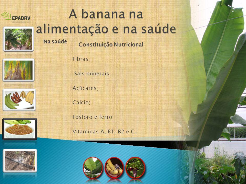 Constituição Nutricional Fibras; Sais minerais; Açúcares; Cálcio; Fósforo e ferro; Vitaminas A, B1, B2 e C. Na saúde