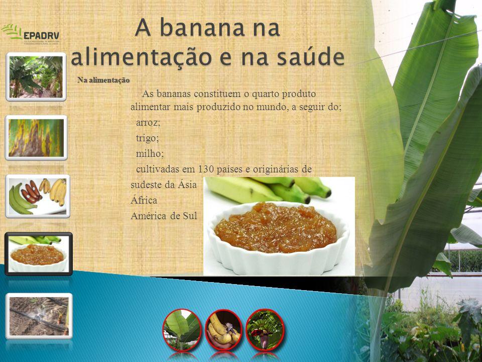As bananas constituem o quarto produto alimentar mais produzido no mundo, a seguir do; arroz; trigo; milho; cultivadas em 130 países e originárias de
