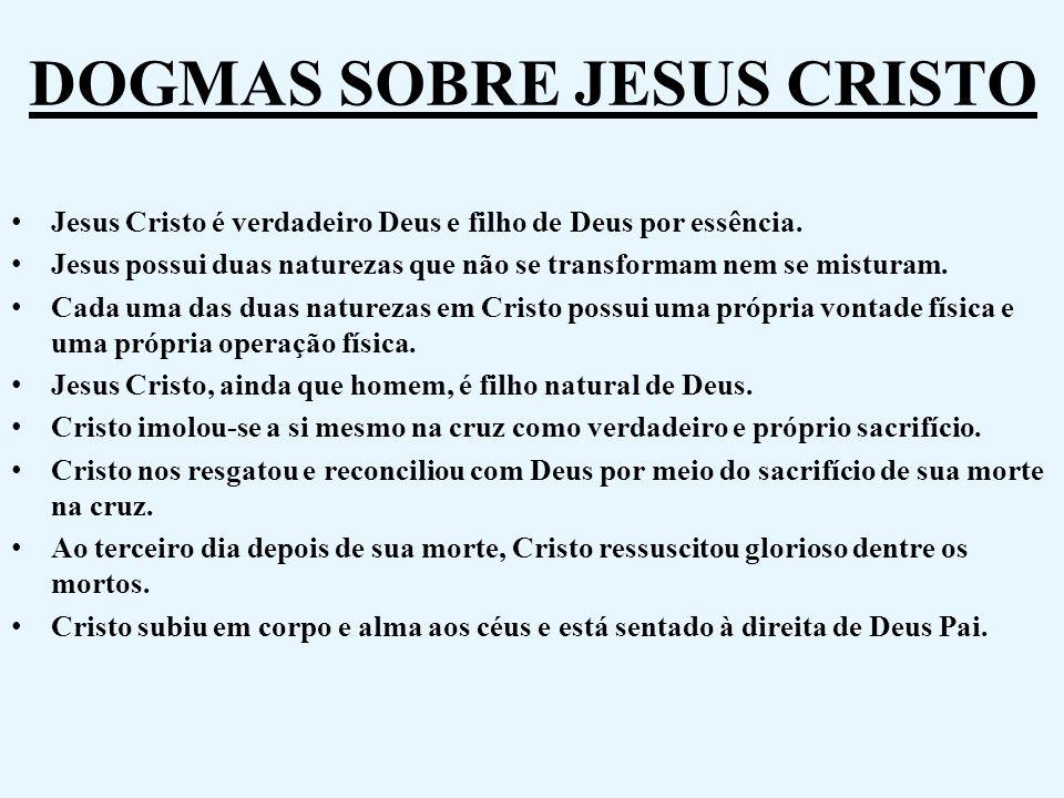 DOGMAS SOBRE JESUS CRISTO Jesus Cristo é verdadeiro Deus e filho de Deus por essência. Jesus possui duas naturezas que não se transformam nem se mistu