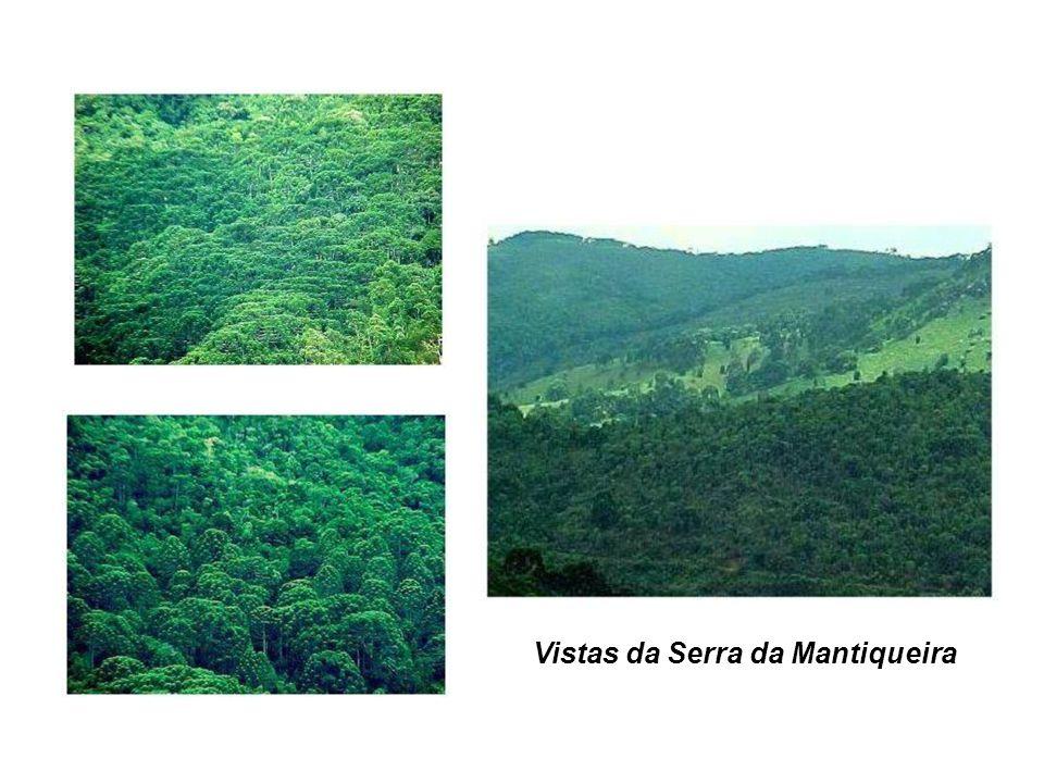 Vistas da Serra da Mantiqueira