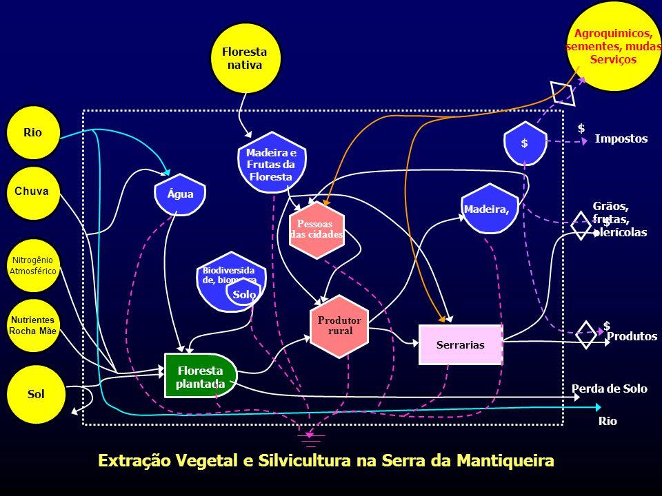 Extração Vegetal e Silvicultura na Serra da Mantiqueira Serrarias Pessoas das cidades Produtor rural Floresta plantada Biodiversida de, biomassa Solo