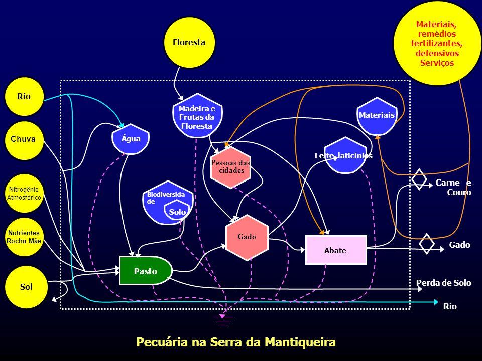 Pecuária na Serra da Mantiqueira Abate Pessoas das cidades Gado Pasto Biodiversida de Solo Madeira e Frutas da Floresta Materiais Leite, laticínios Ág