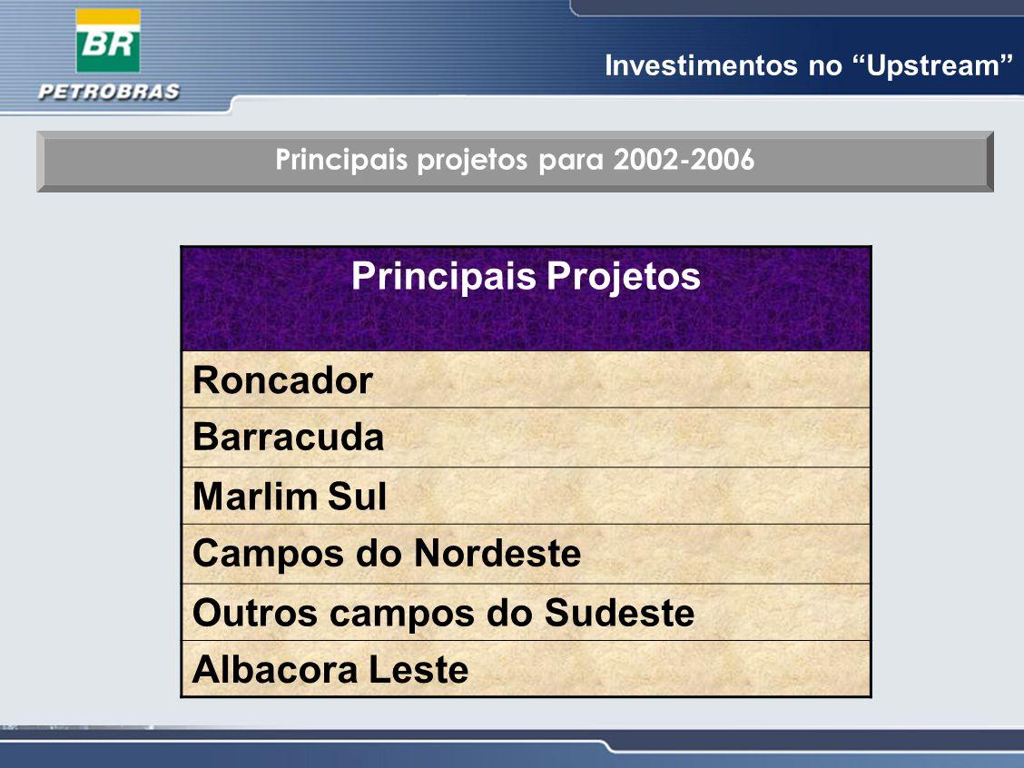 """Investimentos no """"Upstream"""" Principais projetos para 2002-2006 Principais Projetos Roncador Barracuda Marlim Sul Campos do Nordeste Outros campos do S"""