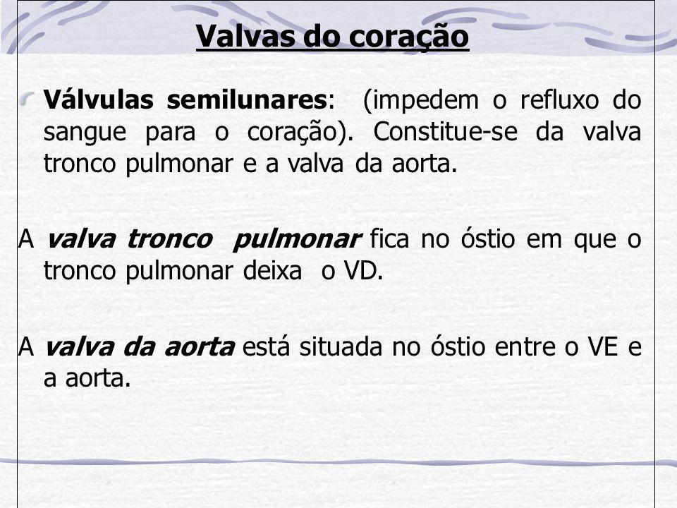 Valvas do coração Válvulas semilunares: (impedem o refluxo do sangue para o coração).