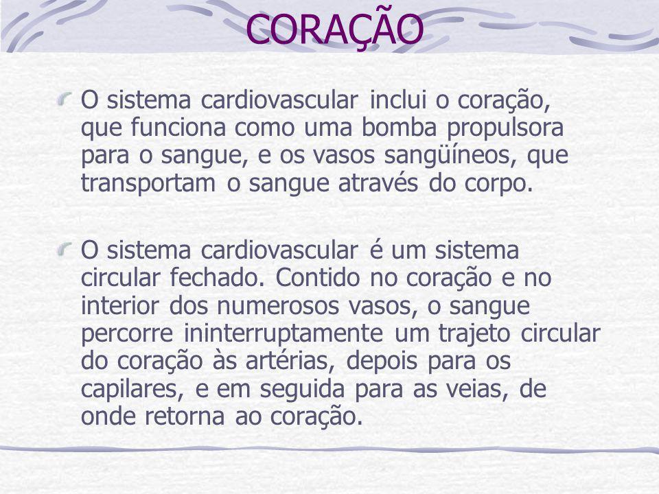 CORAÇÃO O sistema cardiovascular inclui o coração, que funciona como uma bomba propulsora para o sangue, e os vasos sangüíneos, que transportam o sangue através do corpo.
