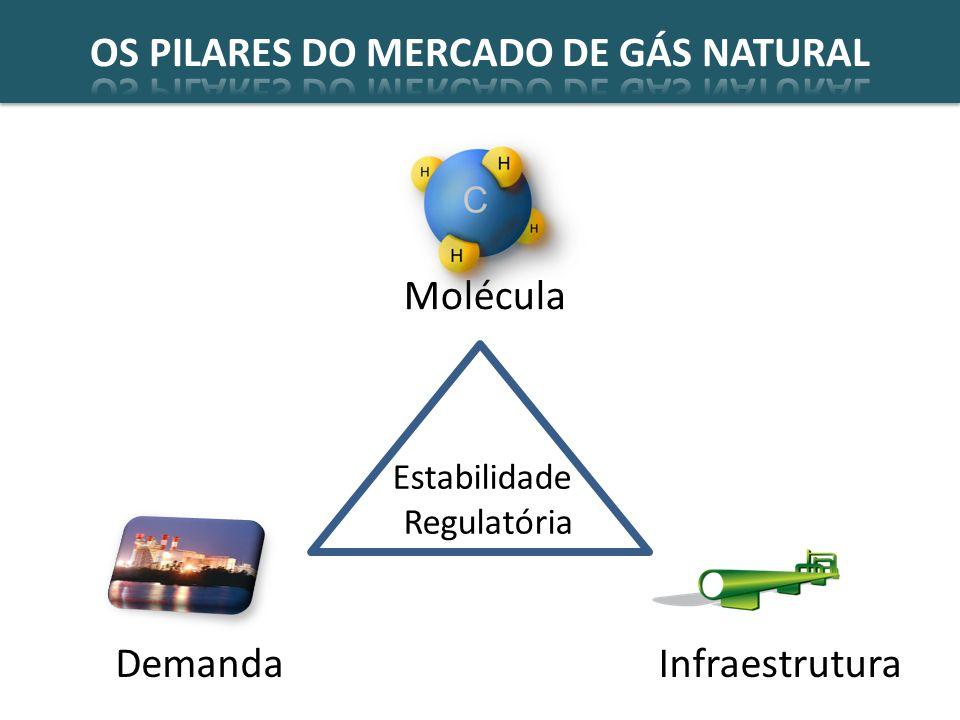 Estabilidade Regulatória Molécula InfraestruturaDemanda