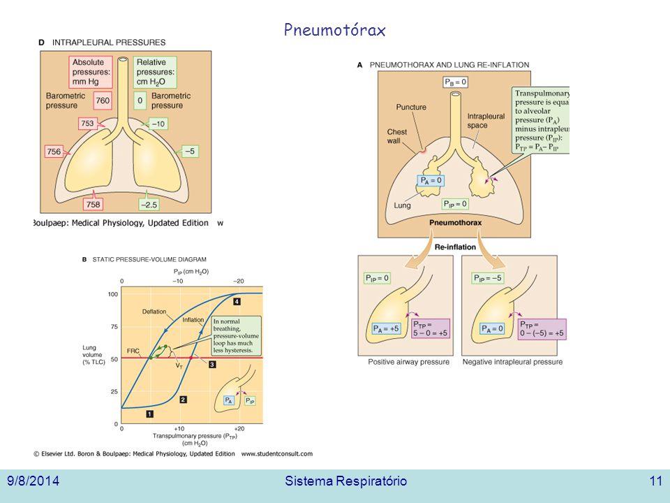 9/8/2014Sistema Respiratório11 Pneumotórax