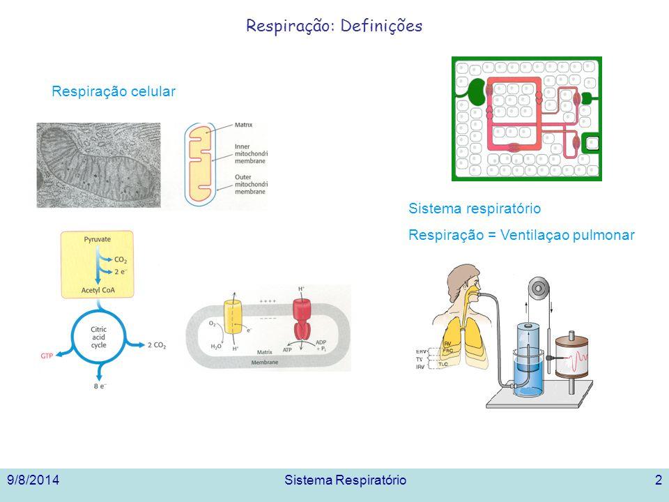 9/8/2014Sistema Respiratório3 Sistema Respiratório Humano: Partes, Temas 1.Gases na atmosfera.