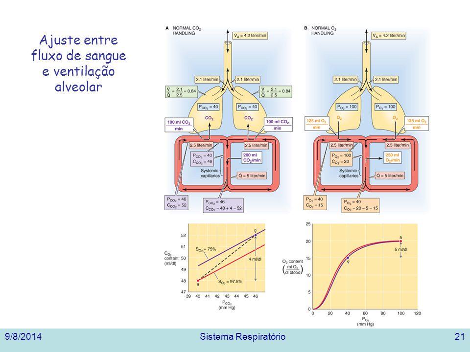 Ajuste entre fluxo de sangue e ventilação alveolar 9/8/2014Sistema Respiratório21