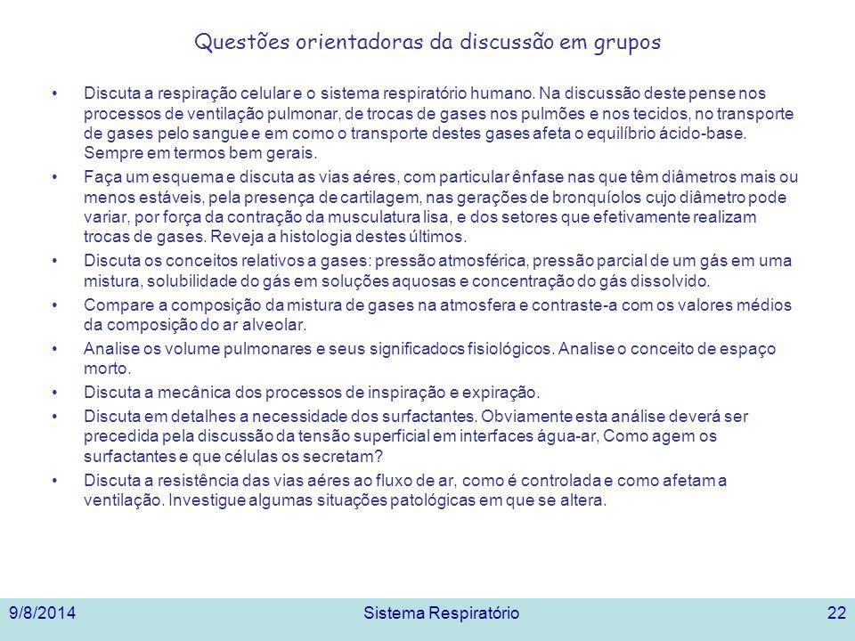9/8/2014Sistema Respiratório22 Questões orientadoras da discussão em grupos Discuta a respiração celular e o sistema respiratório humano. Na discussão