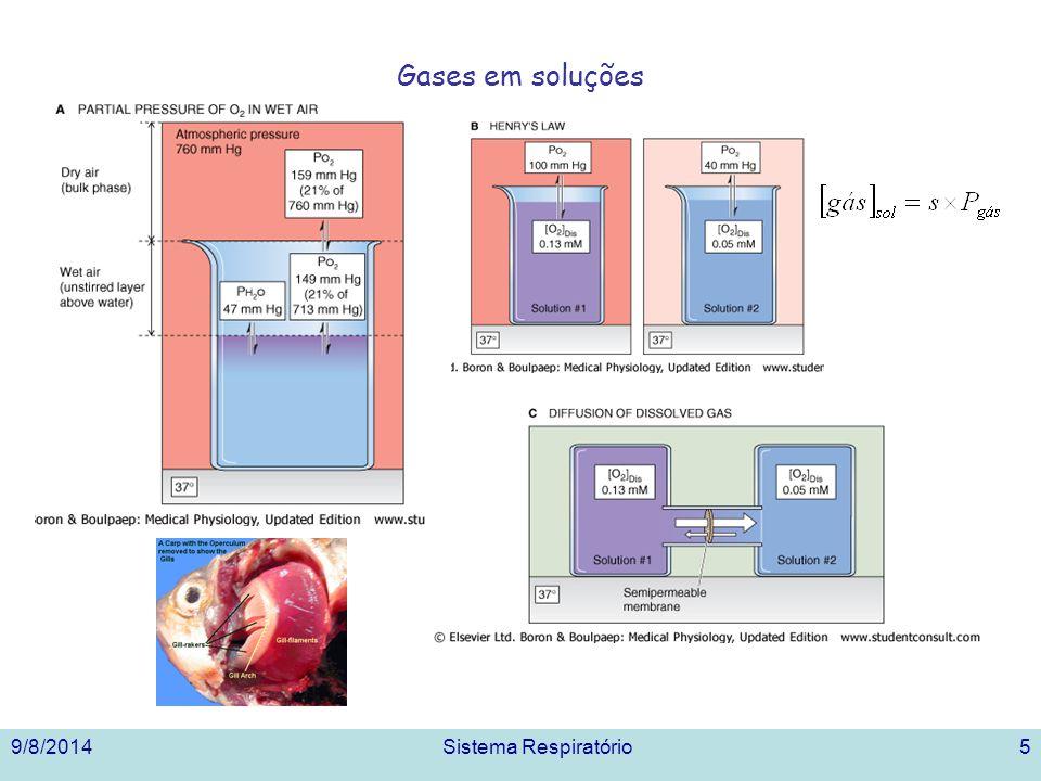 9/8/2014Sistema Respiratório5 Gases em soluções