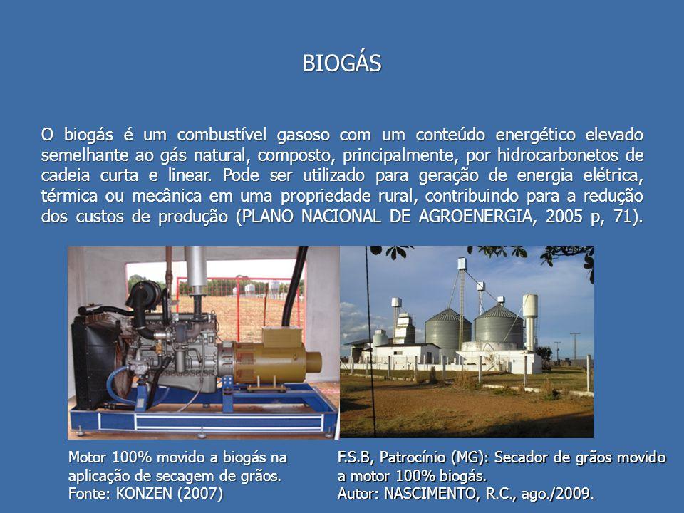 BIOGÁS O biogás é um combustível gasoso com um conteúdo energético elevado semelhante ao gás natural, composto, principalmente, por hidrocarbonetos de cadeia curta e linear.