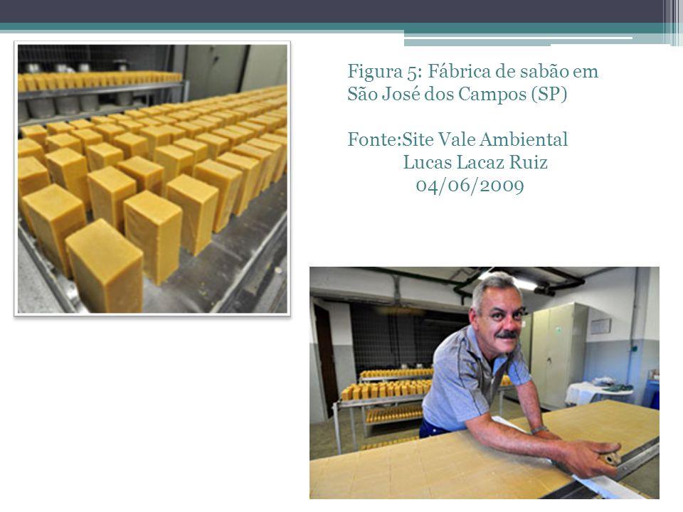 Figura 5: Fábrica de sabão em São José dos Campos (SP) Fonte:Site Vale Ambiental Lucas Lacaz Ruiz 04/06/2009