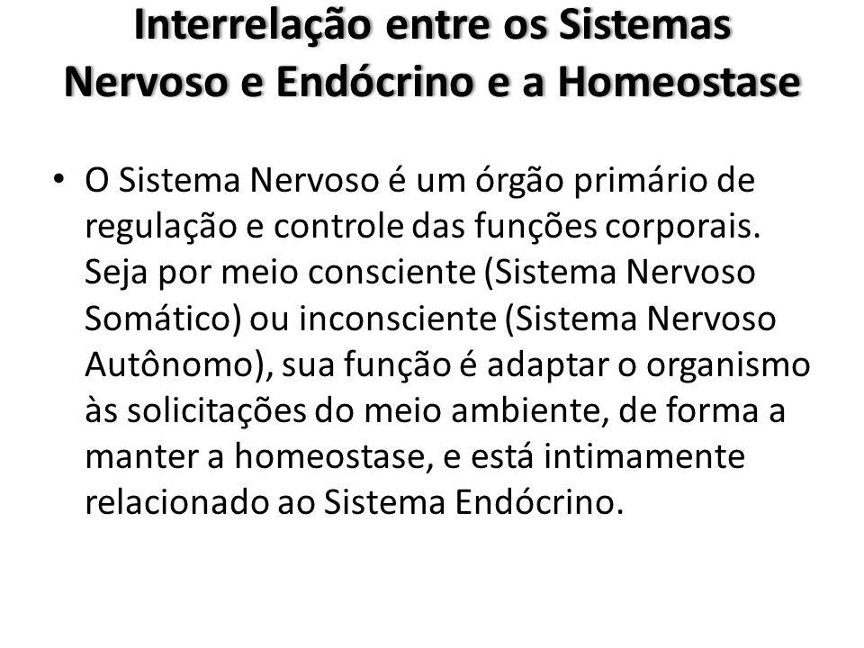 Interrelação entre os Sistemas Nervoso e Endócrino e a Homeostase O Sistema Nervoso é um órgão primário de regulação e controle das funções corporais.