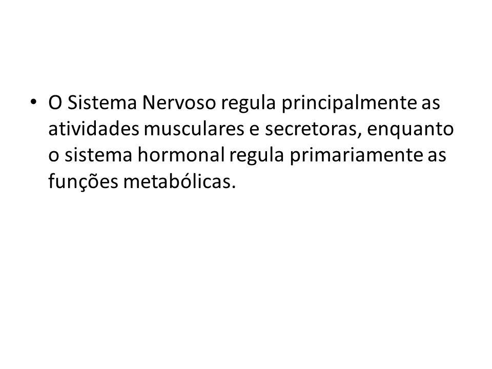 O Sistema Nervoso regula principalmente as atividades musculares e secretoras, enquanto o sistema hormonal regula primariamente as funções metabólicas
