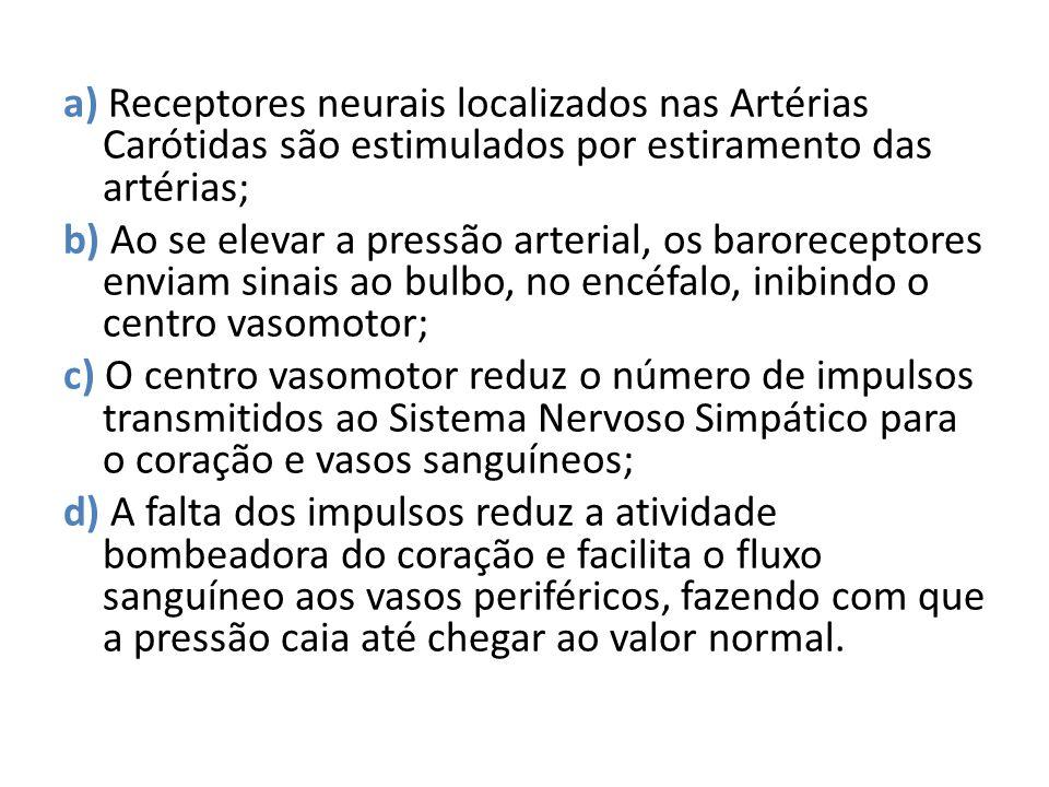 a) Receptores neurais localizados nas Artérias Carótidas são estimulados por estiramento das artérias; b) Ao se elevar a pressão arterial, os barorece