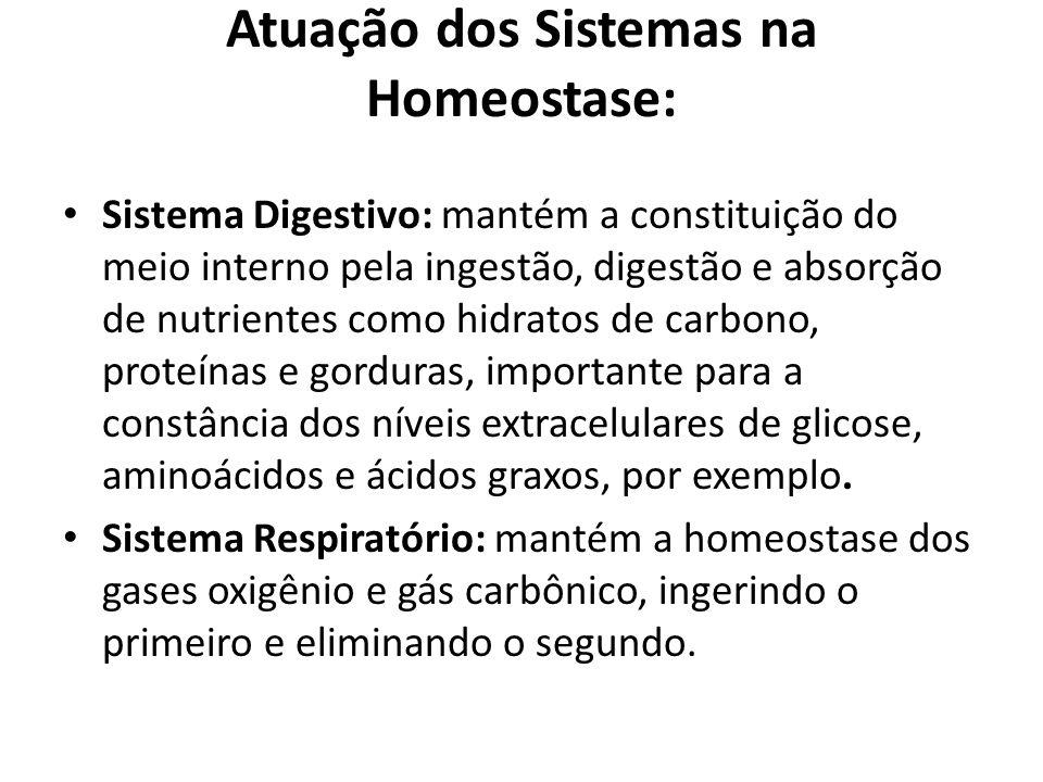 Atuação dos Sistemas na Homeostase: Sistema Digestivo: mantém a constituição do meio interno pela ingestão, digestão e absorção de nutrientes como hid