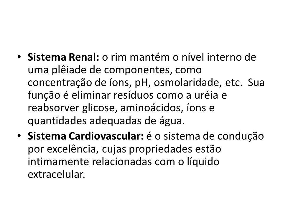 Sistema Renal: o rim mantém o nível interno de uma plêiade de componentes, como concentração de íons, pH, osmolaridade, etc. Sua função é eliminar res