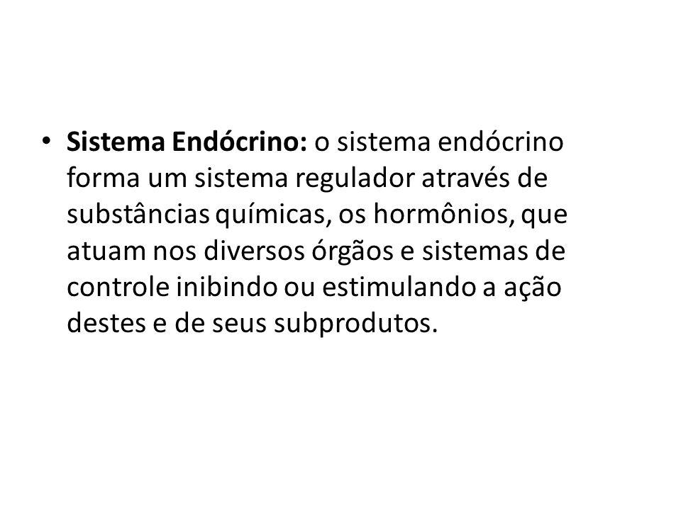 Sistema Endócrino: o sistema endócrino forma um sistema regulador através de substâncias químicas, os hormônios, que atuam nos diversos órgãos e siste