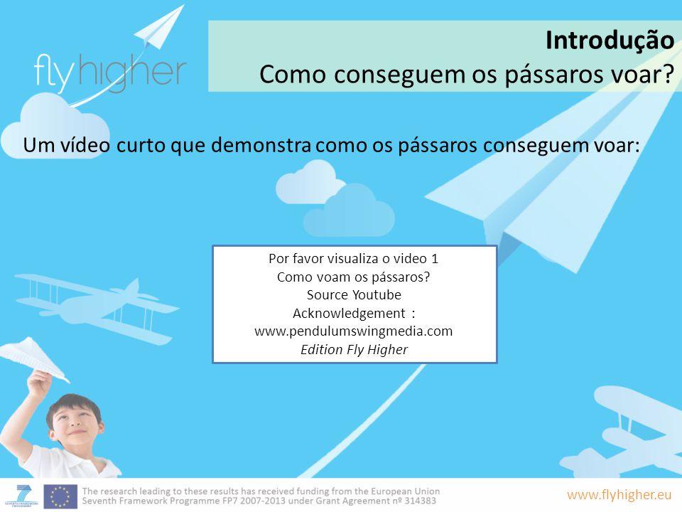 www.flyhigher.eu Um vídeo curto que demonstra como os pássaros conseguem voar: Introdução Como conseguem os pássaros voar? Por favor visualiza o video