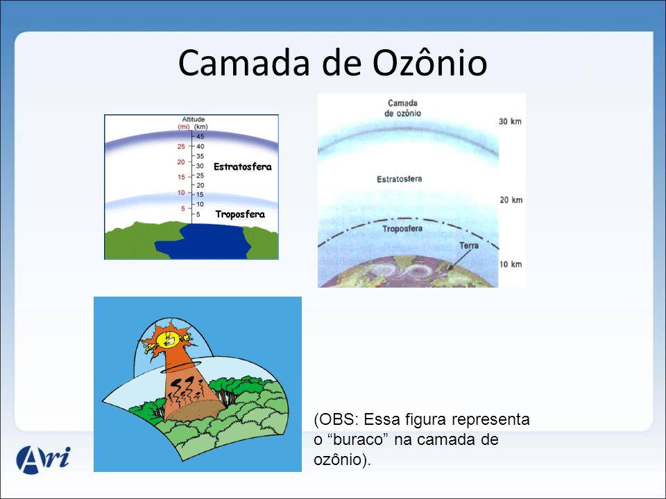 """Camada de Ozônio (OBS: Essa figura representa o """"buraco"""" na camada de ozônio)."""