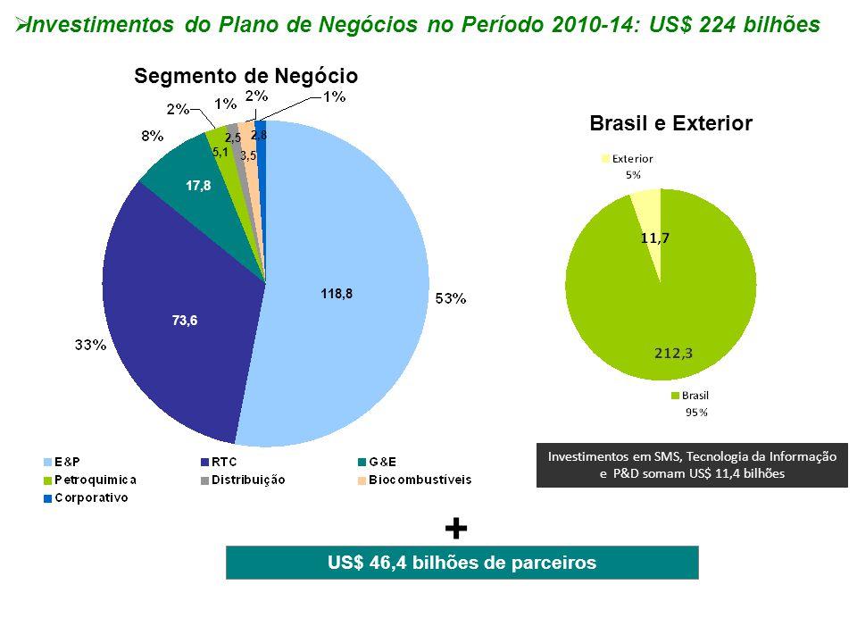  Investimentos do Plano de Negócios no Período 2010-14: US$ 224 bilhões Segmento de Negócio Brasil e Exterior 118,8 73,6 5,1 2,5 3,5 2,8 17,8 + US$ 4
