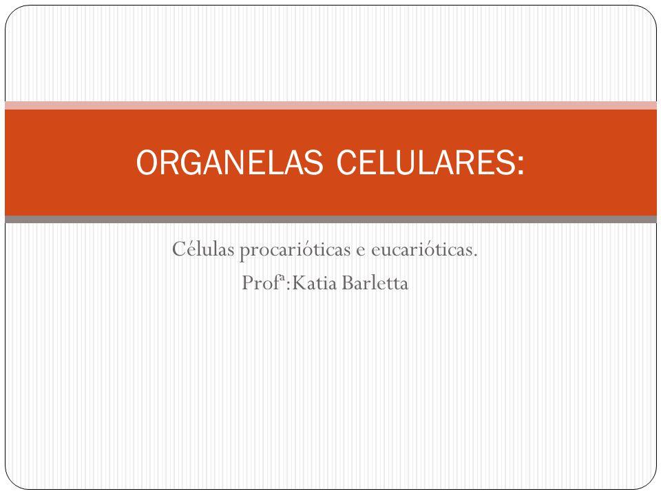Células procarióticas e eucarióticas. Profª:Katia Barletta ORGANELAS CELULARES: