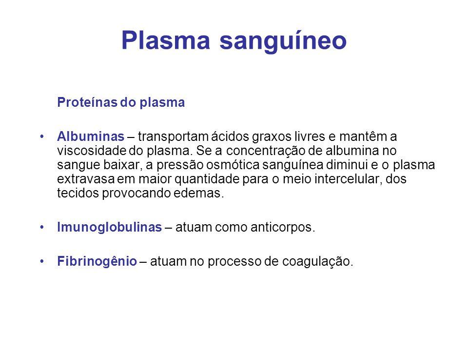 Plasma sanguíneo Proteínas do plasma Albuminas – transportam ácidos graxos livres e mantêm a viscosidade do plasma. Se a concentração de albumina no s