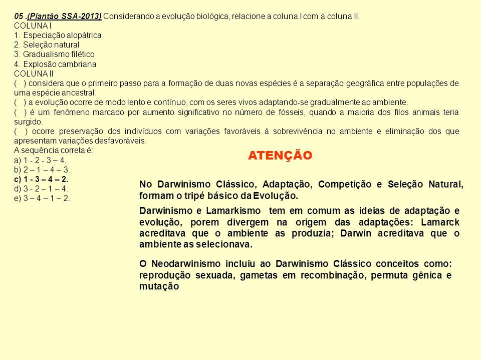 05.(Plantão SSA-2013) Considerando a evolução biológica, relacione a coluna I com a coluna II. COLUNA I 1. Especiação alopátrica 2. Seleção natural 3.