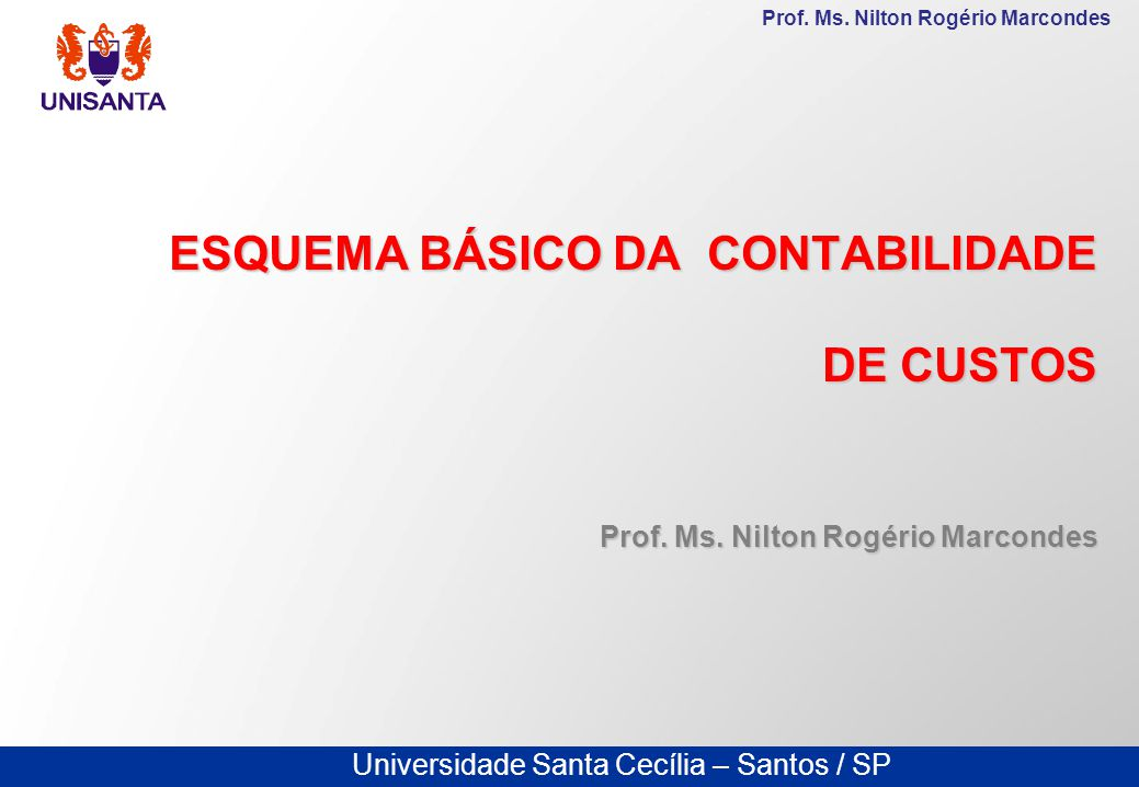 Universidade Santa Cecília – Santos / SP Prof.Ms.