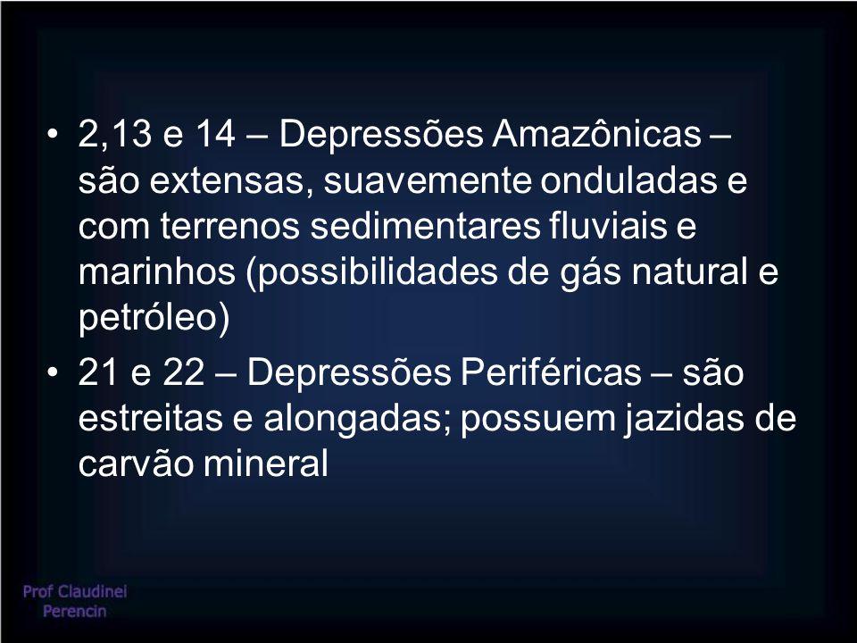 2,13 e 14 – Depressões Amazônicas – são extensas, suavemente onduladas e com terrenos sedimentares fluviais e marinhos (possibilidades de gás natural
